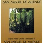 Some Common and Interesting Plants of San Miguel de Allende (1999)